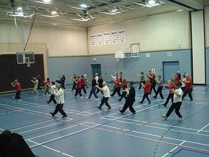 Group-Tai-Chi-ottawa-valley-push-1024x768sm