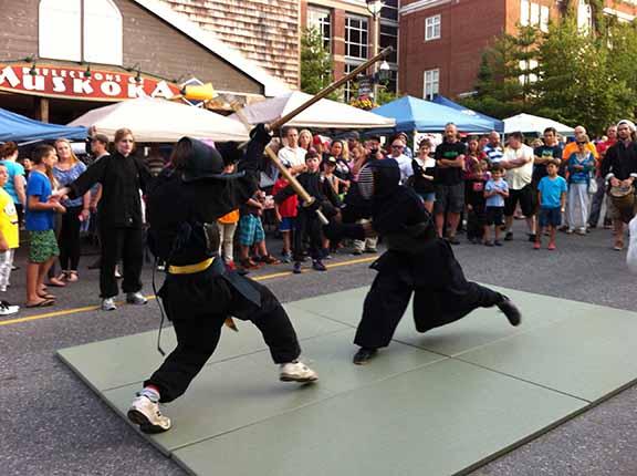 sword martial arts ontario